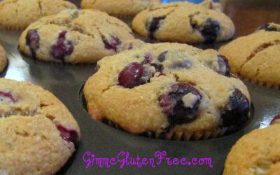 Gluten Free ~ Blissful Blueberry Muffins